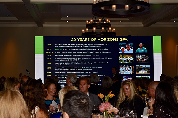 HorizonsGFA 20th Anniversary Fall Gala